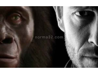 Зубы человека: шокирующая эволюция